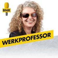 werkprofessor
